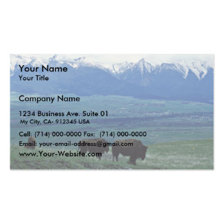 Bison Business Card Templates