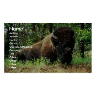 Bison Business Card Template