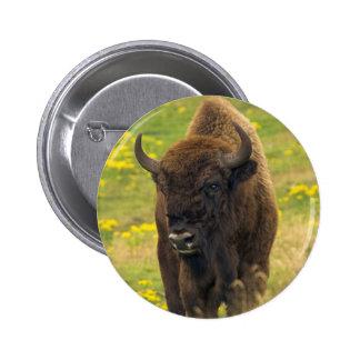 Bison Button Badge