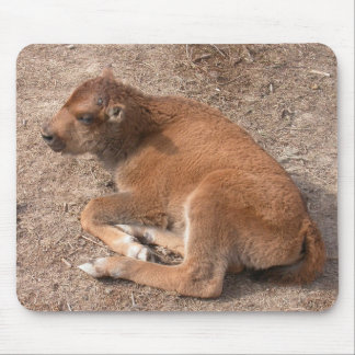 Bison Calf Mouse Pad