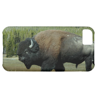 Bison iPhone 5C Cover