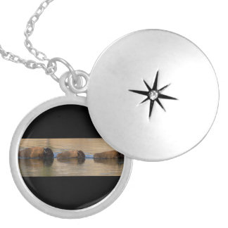Bison Crossing River Silver Plated Necklace