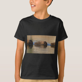 Bison Crossing River T-Shirt