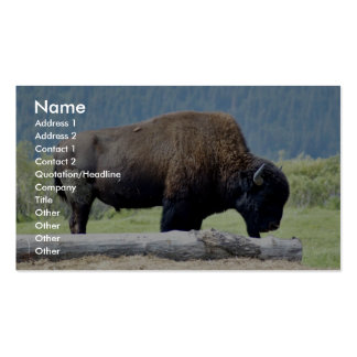 Bison Double-Sided Standard Business Cards (Pack Of 100)