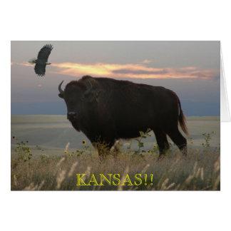 Bison/Eagle//KANSAS!! greeting card