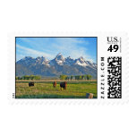 Bison Fields and Rockies Stamps