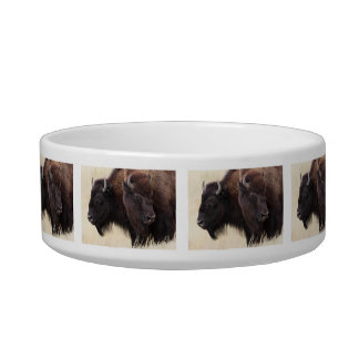 bison friendship bowl