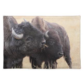bison friendship cloth placemat