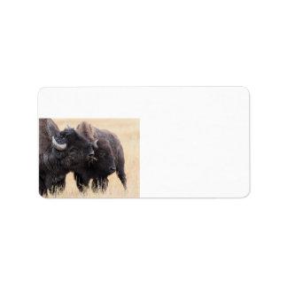 bison friendship label