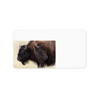 bison friendship label