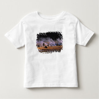 Bison grazing in the Upper Geyser Basin near Toddler T-shirt