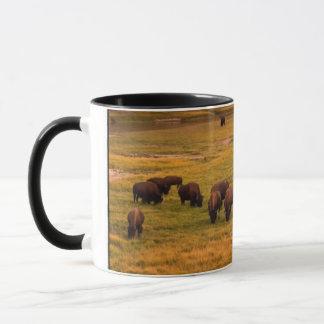 Bison Grazing on Hill at Hayden Valley Mug