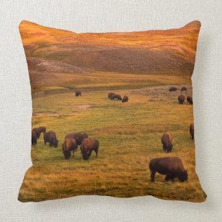 Bison Grazing on Hill at Hayden Valley Throw Pillow