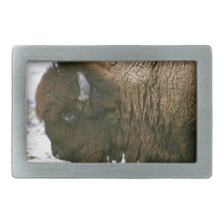 Bison head rectangular belt buckle