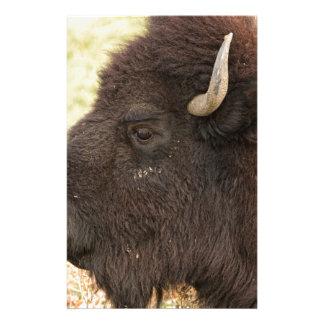 Bison Headshot Profile Stationery