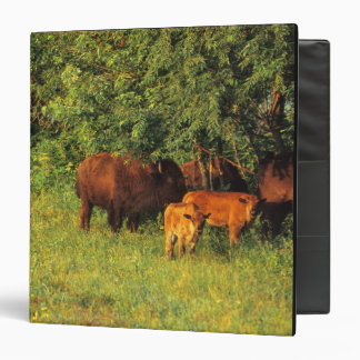 Bison Herd at Neil Smith NWR in Iowa Binders