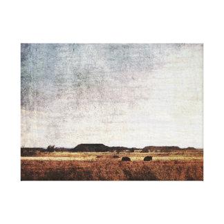 Bison in Field Photo Design Canvas Print