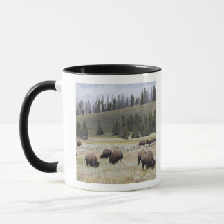 Bison in the Hayden Valley of Yellowstone Mug