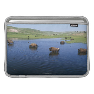 Bison In The Water With Numerous Cliff Swallows MacBook Sleeve