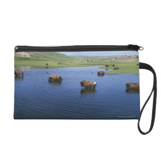 Bison In The Water With Numerous Cliff Swallows Wristlet Purse