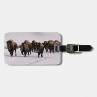 Bison in Winter Bag Tag