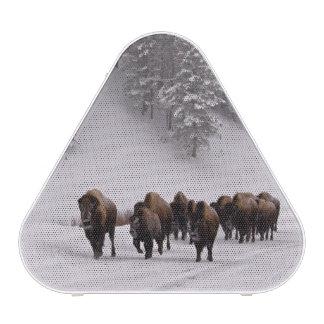 Bison in Winter Bluetooth Speaker