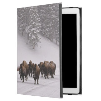 Bison in Winter iPad Pro Case