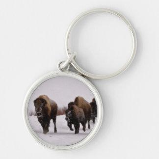Bison in Winter Keychain
