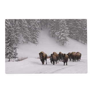 Bison in Winter Laminated Place Mat