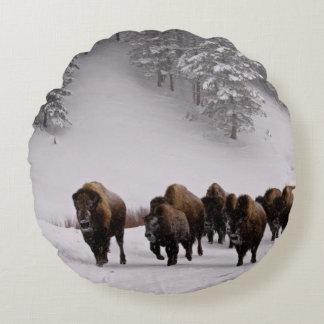 Bison in Winter Round Pillow