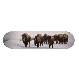Bison in Winter Skateboard Deck