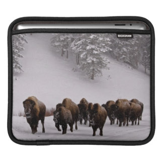 Bison in Winter Sleeve For iPads