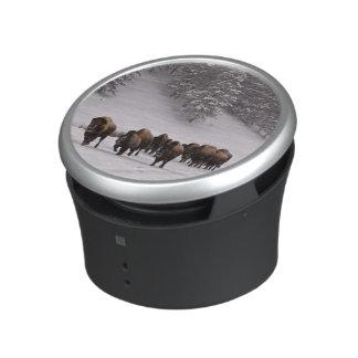 Bison in Winter Speaker