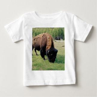 Bison in Yellowstone Baby T-Shirt