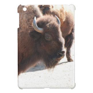 Bison iPad Mini Cases