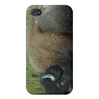 Bison iPhone 4 Case