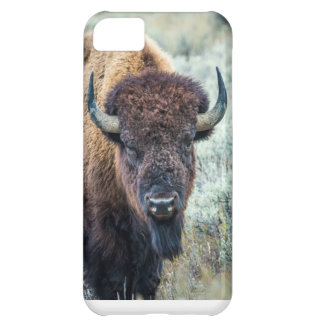 Bison Iphone Case iPhone 5C Covers