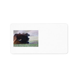 bison label
