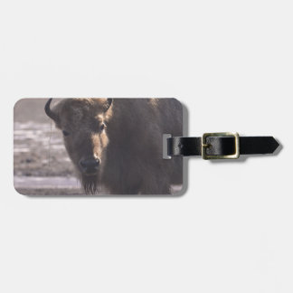 Bison on a Prairie Tags For Luggage