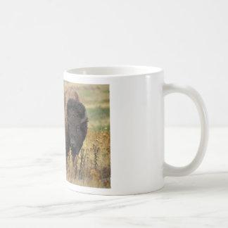 Bison photo coffee mug