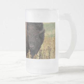 Bison photo frosted glass beer mug