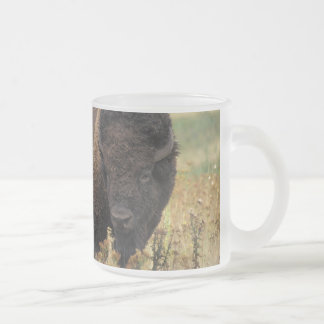 Bison photo frosted glass coffee mug
