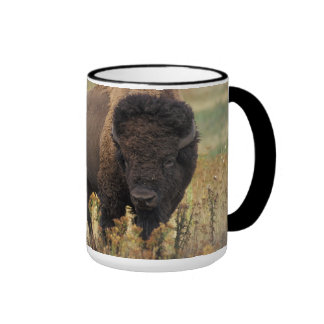 Bison photo ringer mug