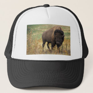 Bison photo trucker hat