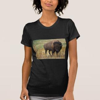 Bison photo t shirts