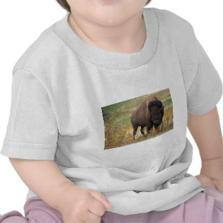 Bison photo shirt
