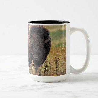 Bison photo Two-Tone coffee mug