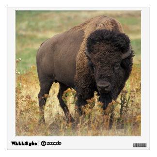 Bison photo wall sticker