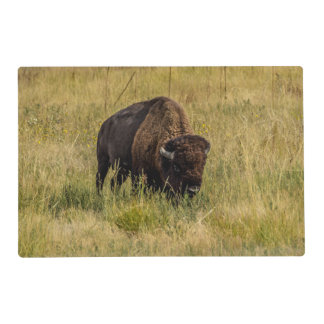 Bison Placemat