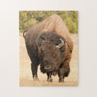Bison Jigsaw Puzzles